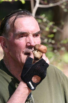 Larry with bolete button