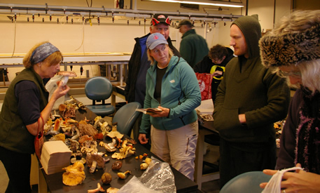 Unpacking for science at the Russula blitz