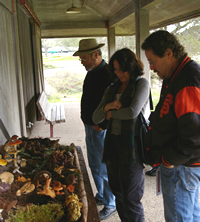 Bear Valley Visitors inspect tables