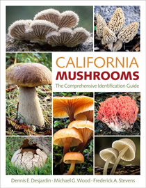 california mushrooms