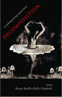 decomposition cover