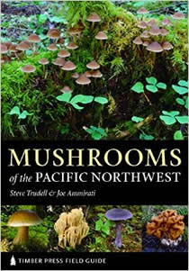 mushrooms of pacific northwest